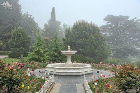 White Marble Fountain with Tulips Flowerbed in the Fog